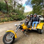 Short disability trike rides,Sydney